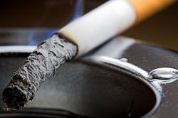 Основная причина бронхеоальвеолярного рака легкого - курение